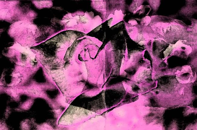roseglow6