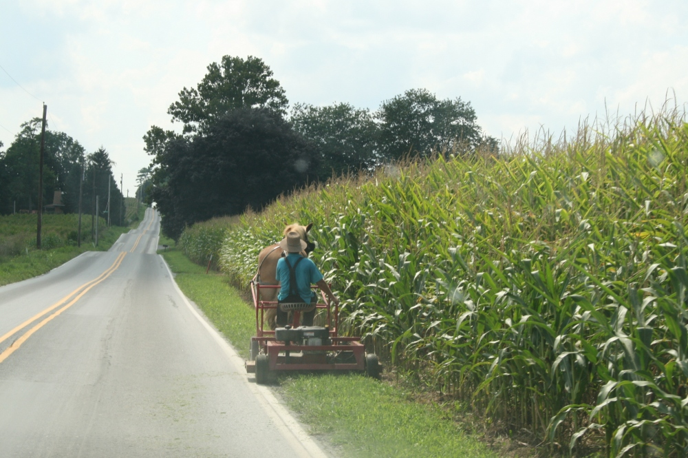 Witness Movie setting in scenic Lancaster County (5/6)