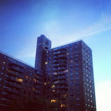 Brooklynhl