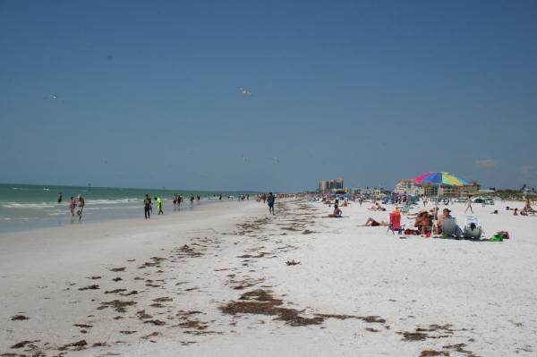 Florida14 159